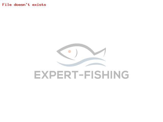 NALUCA DAIWA PROREX MICRO SPINNER 3.5gr GOLD PERCH